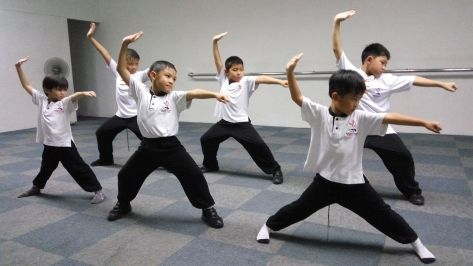 Aprender Kung Fu