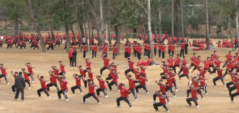 students-2-shaolin-temple-s